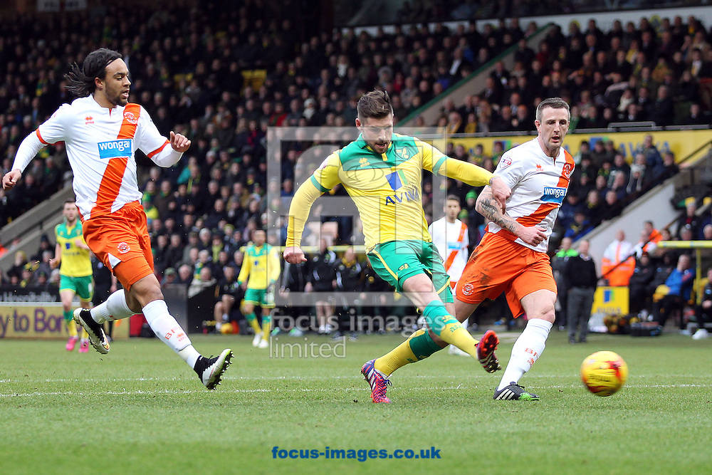 Gary Hooper of Norwich scores his sides 1st goal during the Sky Bet Championship match at Carrow Road, Norwich<br /> Picture by Paul Chesterton/Focus Images Ltd +44 7904 640267<br /> 07/02/2015