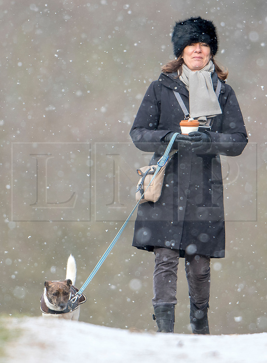 © Licensed to London News Pictures. 26/02/2018. London, UK. A dog walker braves heavy snowfall and freezing temperatures in Richmond Park, west London, as a cold front sweeps in from the east. Up to 20cm of snow are expected in parts of the UK, with temperatures feeling as low as -15C in some places. Photo credit: Ben Cawthra/LNP
