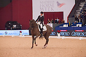 Madrid Horse Week 0'14 (Dressage)