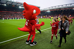 LIVERPOOL, ENGLAND - Saturday, January 19, 2019: Liverpool's Mighty Red gives a young mascot a high-five before the FA Premier League match between Liverpool FC and Crystal Palace FC at Anfield. (Pic by David Rawcliffe/Propaganda)