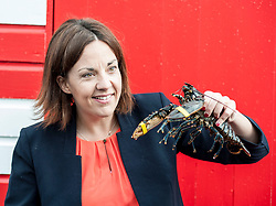 Scottish Labour leader Kezia Dugdale visited a lobster hatchery in East Lothian as part of Scottish Labour's push to win the seat. She met 2 lobsters with yellow and blue bands to highlight the 2 danger of a tory and SNP pincer movement at the general election on June 8th.<br /> <br /> &copy; Dave Johnston/ EEm