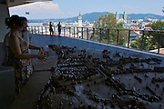 Linz, Cultural Capital of Europe 2009. View over Linz from the new South Wing of the Schlossmuseum (Castle Museum).