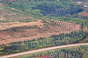 """Note the comparison of surrounding natural forest with the """"reclaimed"""" area of Syncrude tar sands mines"""