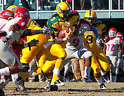 Norfolk State senior running back DeAngelo Branche rushed for a career high 212 yards and scored three touchdowns during their 31 - 21 rout of Delaware State at Dick Price Stadium on the campus of Norfolk State University in Norfolk, Virginia.  (Photo by Mark W. Sutton)