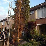 Brandweer Huizen haalt bomen weg