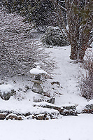 Snow falling on a stone lantern at the edge of a lake. Asticou Azalea Garden, Northeast Harbor, Maine