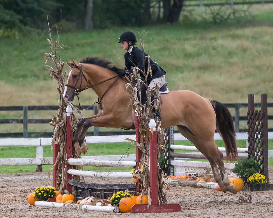 Image from the October 10, 2016 Hunter horse show held at Elmington Farm in Berryville, Virginia