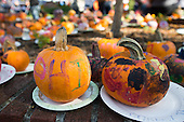 2012 Blackwood Pumpkin Festival