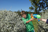 Two boys (6-11) playing with water pistols among bushes laughing close-up of hand with gun