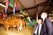 Irish Limousin Cattle Society at The National Ploughing Championships 2014