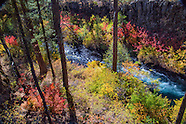 The Wild and Scenic Metolius River