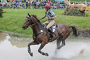 COOLEYS FIRST ridden by Vicky Brake at Bramham International Horse Trials 2016 at  at Bramham Park, Bramham, United Kingdom on 11 June 2016. Photo by Mark P Doherty.