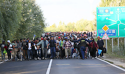 © London News Pictures. Migrants walk towards the camp after leaving the temporary border camp close to the Hungarian and Serbian border town of Roszke, Hungary, September 7 2015. The UN's humanitarian agencies are on the verge of bankruptcy and unable to meet the basic needs of millions of people because of the size of the refugee crisis in the Middle East, Africa and Europe, senior figures within the UN have told the media.   Picture by Paul Hackett /LNP