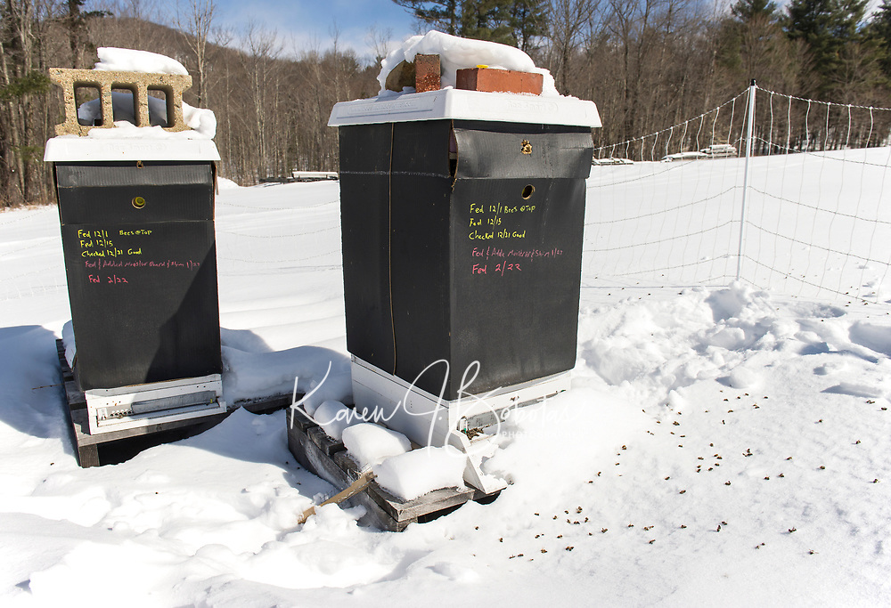 A record of feeding and maintenance activity over the winter months written on Jeff McCormack's hives at his bee farm in Gilmanton.  (Karen Bobotas/for the Laconia Daily Sun)