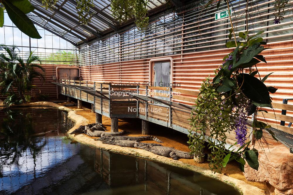 France, Auvergne-Rhône-Alpes, Drôme (26), Ferme aux Crocodiles à Pierrlatte dans la vallée du Rhône // France, region of Auvergne Rhone-Alpes, department of Drome, Crocodiles Farm at Pierrelatte in the Rhone valley