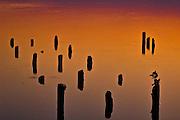 Reel Foot at sunrise