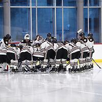 Women's Ice Hockey: Hamline University Pipers vs. Concordia College, Moorhead Cobbers