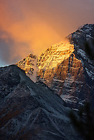 Dawn on Mount Temple., Alberta, Canada, Isobel Springett