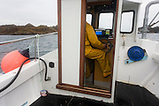 Local fisherman Neil Cameron sails to his buoys where his creels catch Velvet and Green Crab between Fionnphort and Iona, Isle of Mull, Scotland. The contents of 500 creels is taken every week by truck and sold to Spain. On each line are 25 creels that are spaced out in different areas of the nearby bays. The main fishing on the Ross of Mull, Ulva Ferry and Tobermory is now is commercial shell fishing with baited traps(creels) for lobsters (homarus gamarus), edible brown crabs( cancer pagurus), Prawn (Norwegian Lobster) and velvet swimming crab (necora puber). Scallop dredgers and Prawn trawlers also operate from both ends of the island, dragging the seabed for their catch. Before the late 1960s shell fishing with creels was generally carried out on a seasonal or part time basis allied to crofting, farming or another shore based job. Small boats today still operate this way.