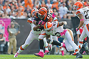 CLEVELAND, OH - OCTOBER 14: Running back Ben Jarvus Green-Ellis #42 of the Cincinnati Bengals gets tackled by free safety Usama Young #28 and strong safety T.J. Ward #43 of the Cleveland Browns at Cleveland Browns Stadium on October 14, 2012 in Cleveland, Ohio. (Photo by Jason Miller/Getty Images)  *** Local Caption *** Ben Jarvus Green-Ellis; Usama Young; T.J. Ward