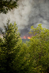 September 12, 2015 - Lake County, California. Flames consume mature forest in Boggs Mountain State Forest shortly after the Valley Fire started,  viewed from Loch Lomond. (Kim Ringeisen / Polaris)