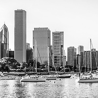 Chicago skyline panorama photo at Monroe Harbor. Panorama photo ratio is 1:3 and is black and white. Picture includes Monroe Harbor boats, Trump Tower, Prudential buildings, BCBS building, and other downtown office buildings along the Chicago lakefront.