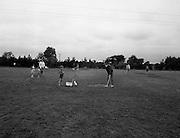 Bord na Mona, Derrygreenagh<br /> 24/07/1973