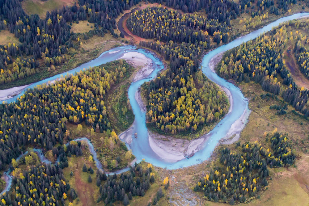 A glacial-blue stream meanders through the Fall color in the cottonwoods