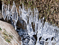 Icicles behaving like stalagmites and stalactites and fusing together on a riverbank in Switzerland during the extremely cold spell of February 2012.