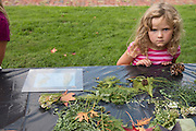 Mackenzie Lee, 5, develops a picture using sunlight and found objects at Fall Family Day at the Kennedy Museum of Art on Saturday, September 29.