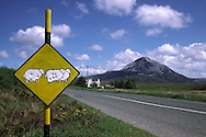 Road sign used as a target near Mount Errigal, in Gaelic An Earagail, Donegal....travel, lifestyle