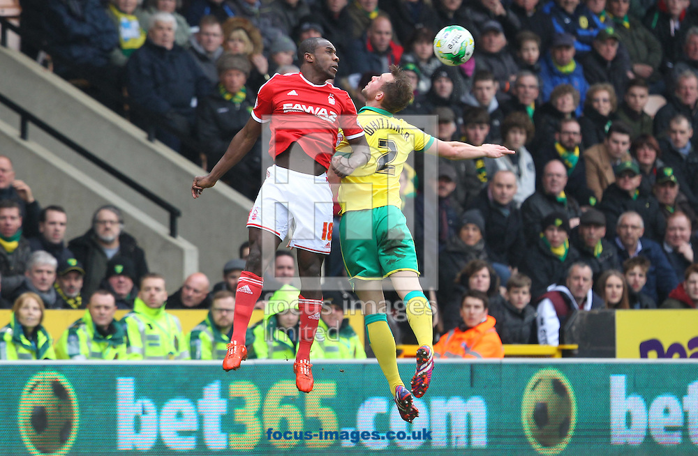 Steven Whittaker of Norwich and Michail Antonio of Nottingham Forest in action during the Sky Bet Championship match at Carrow Road, Norwich<br /> Picture by Paul Chesterton/Focus Images Ltd +44 7904 640267<br /> 21/03/2015