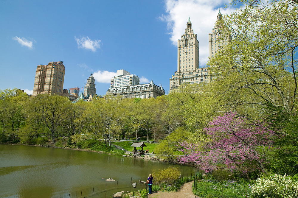 Spring in Central Park by the Lake