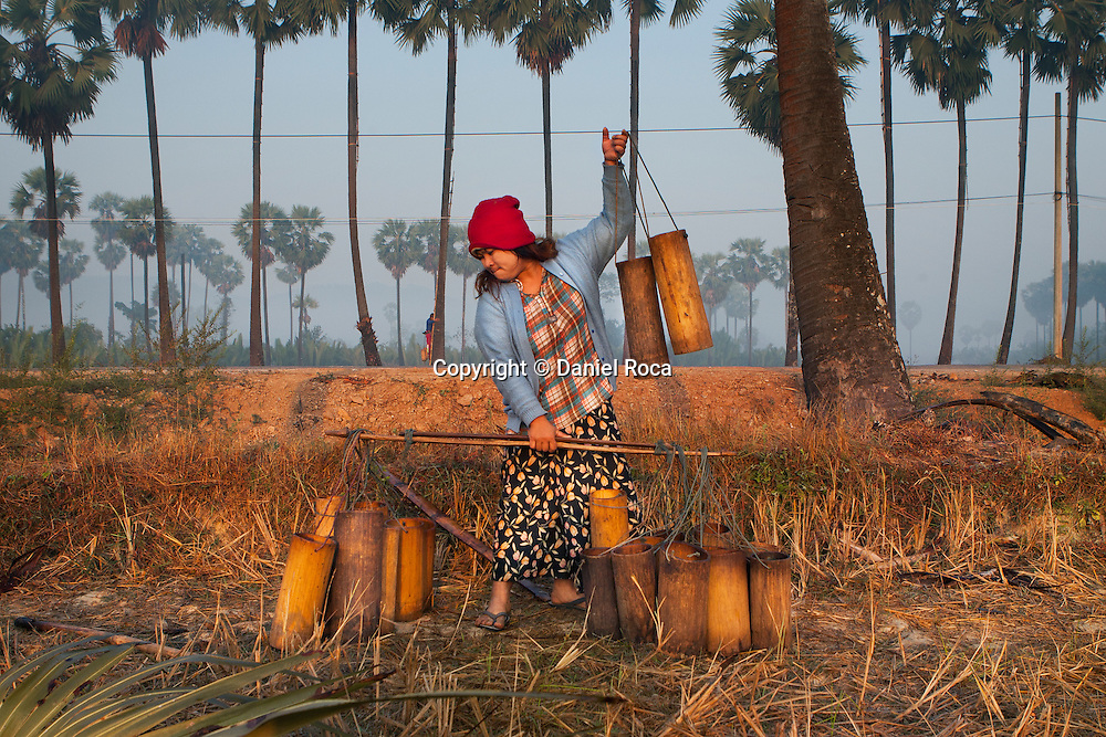 Containers used to collect the palm tree sap. At Ka Myaw Gyi village in the outskirts of Dawei, Myanmar.
