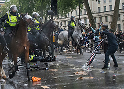 © Licensed to London News Pictures. 06/06/2020. London, UK. A man throws a bike at mounted police in riot gear and a police officer is treaded on the grond after falling off her bike, as police move in to remove protesters gathered in Westminster, central London to take part in a Black Lives Matter demonstration over the killing of African American George Floyd. The death of George Floyd, who died after being restrained by a police officer In Minneapolis, Minnesota, caused widespread rioting and looting across the USA. Photo credit: Ben Cawthra/LNP