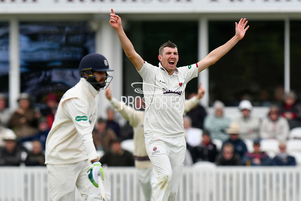Craig Overton of Somerset appeals for an lbw against Tom Alsop of Hampshire which is given not out during the opening day of the Specsavers County Champ Div 1 match between Somerset County Cricket Club and Hampshire County Cricket Club at the Cooper Associates County Ground, Taunton, United Kingdom on 11 May 2018. Picture by Graham Hunt.