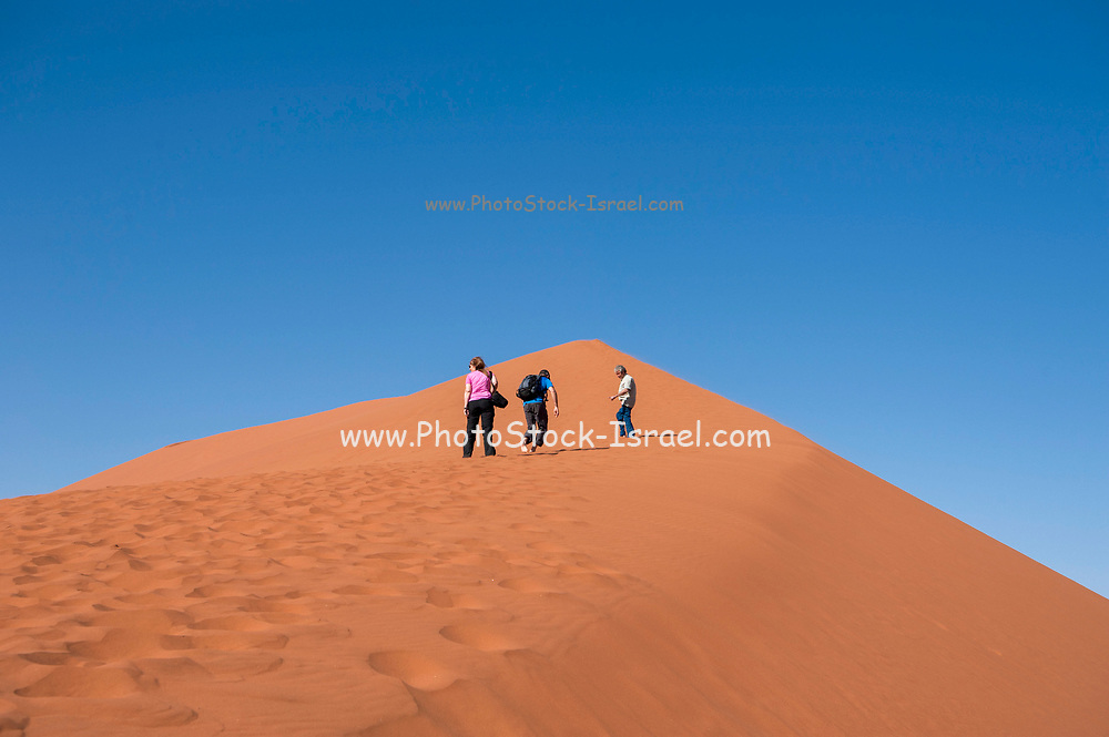 Hikers climbing up a sand dune ridge at Sossusvlei, Namib-Naukluft National Park, Namibia.