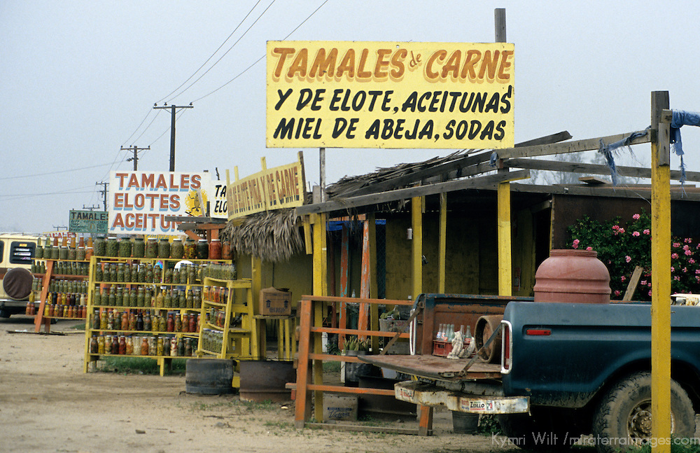 North America, Latin America, Mexico, Baja. Roadside tamale stands.