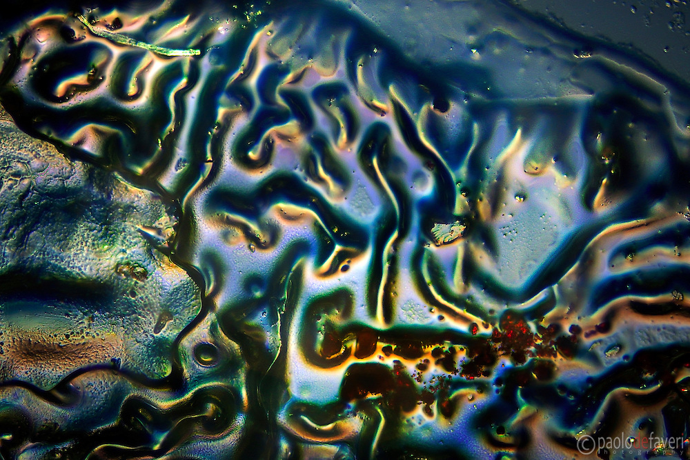 Glue on glass in polarized light, viewed at the microscope