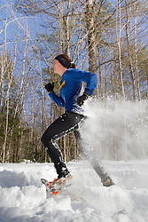 Trail Monster Running:  snowshoe race