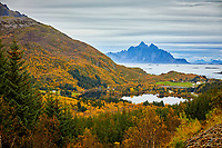 Fall colors and dramatic mountain and island views near the town of Leknes in the Lofoten Islands of Norway.