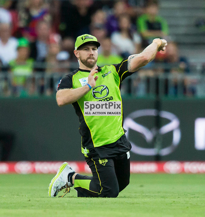 KFC Big Bash League T20 2015-16 , Sydney Thunder v Perth Scorchers, Spotless Stadium; 7 January 2016<br /> Sydney Thunder Aiden Blizzard throws a ball in.