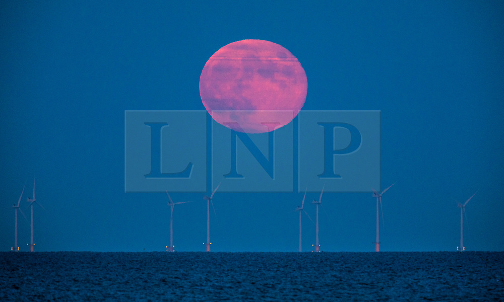 © Licensed to London News Pictures. 17/06/2019. Worthing, UK. The June full moon, known as the Strawberry moon, rises above Rampion wind farm off the south coast of Sussex. The wind farm comprises 116 turbines and is situated 8 miles out into the English Channel. Photo credit: Peter Macdiarmid/LNP