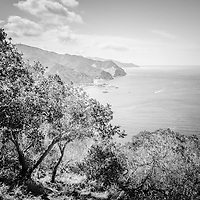 Catalina Island Avalon Bay black and white picture from above in the mountains. Catalina Island is a popular travel destination off the coast of Southern California in the United States.