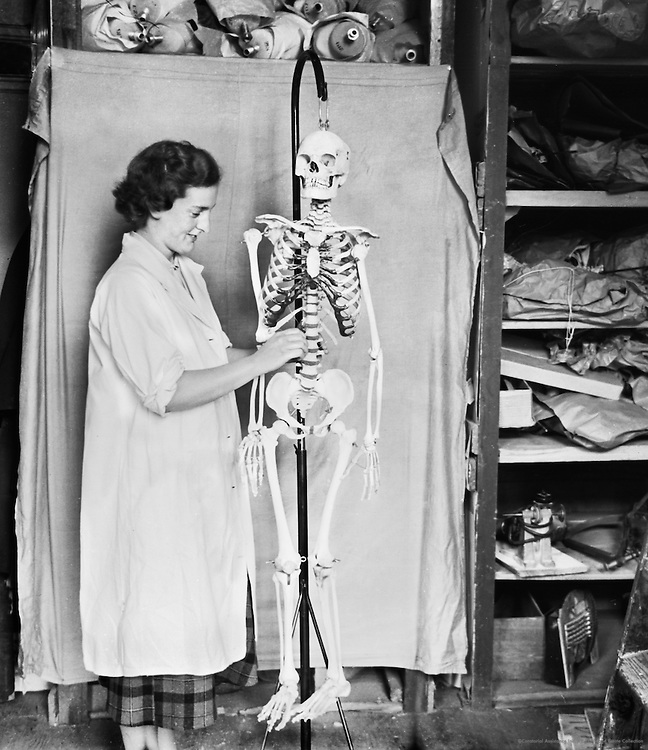 Woman Working in Adam Rouilly & Co., Skeleton Shop, London, c.1939