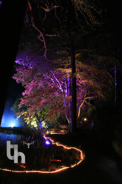 Enchanted Forest, Pitlochry 15-10-08