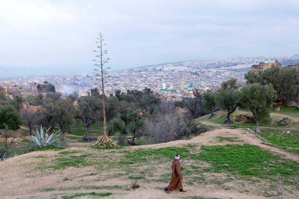 FEZ, MOROCCO - 1ST FEBRUARY 2018 - Person walks past a view over the old Fez Medina, with the Al-Karaouine Mosque and University (building on the left with green tiled roof and white Minaret) and the Zawiya Moulay Idriss II (larger building on the right with pyramid roof).<br /> <br /> Established at the very beginnings of Morocco's oldest imperial city, the University of Al-Karaouine (also written as Al-Quaraouiyine and Al-Qarawiyyin) was founded in 859 and is considered by Unesco and the Guinness Book of World Records to be the oldest continually operating university in the world.