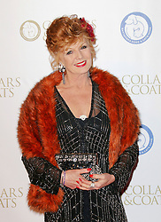 © Licensed to London News Pictures. 07/11/2013.  Rula Lenska attending the Battersea Dogs & Cats Home Collars & Coats Gala Ball at Battersea Evolution, London UK. Photo credit: by Richard Goldschmidt/LNP