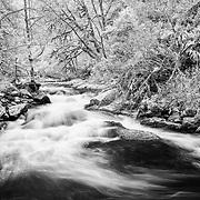 Sweet Creek Heavy Water Flow - Mapleton, Oregon - Infrared Black & White