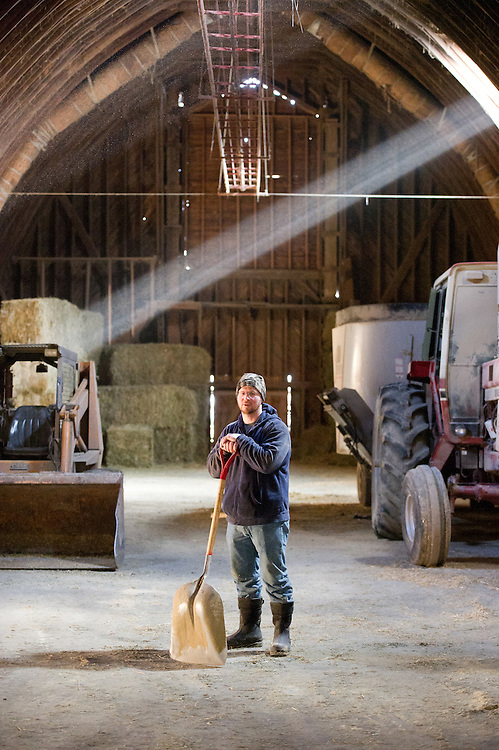 Cow farmer standing in the middle of a barn